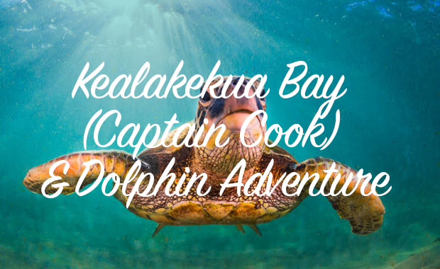 Kealakekua Bay (Captain Cook) & Dolphin Adventure
